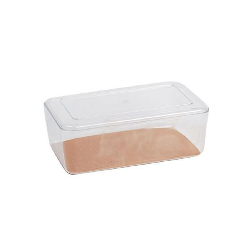 Stewart Clear Hatchling  Box, Large